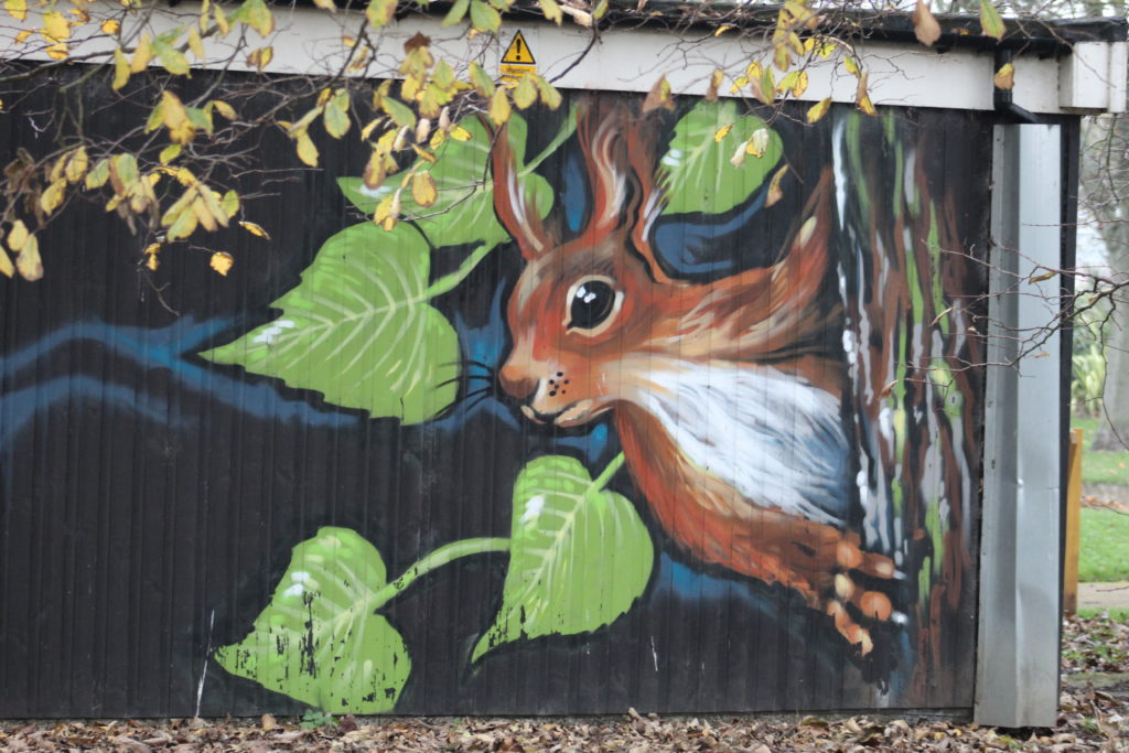 Squirrel Painting - Ridley Park Blyth