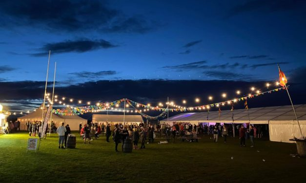 INTO THE FIELDS: FESTIVAL WEEKEND REVIEW…FRIDAY